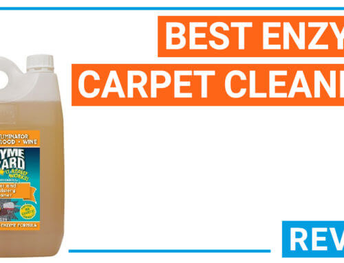 Best enzyme carpet cleaners