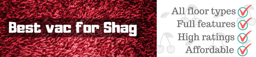 Best vac for shag carpet