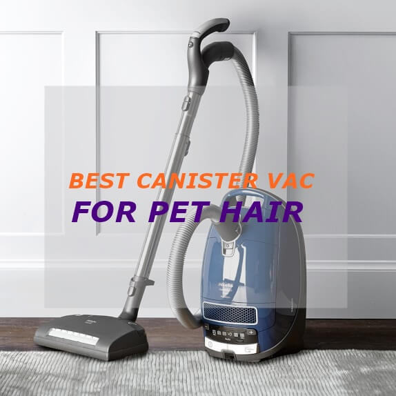 Best Canister Vacuum For Pet Hair