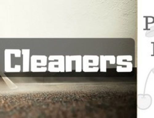 Best Carpet Cleaner/ Shampooer in 2019: The definitive guide & listing
