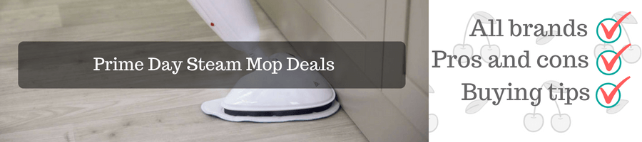 prime day steam mop deal