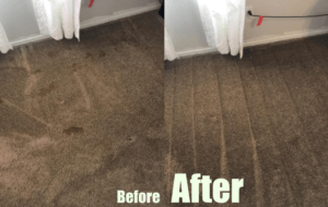 Bissell 1622 cleaning performance- before and after