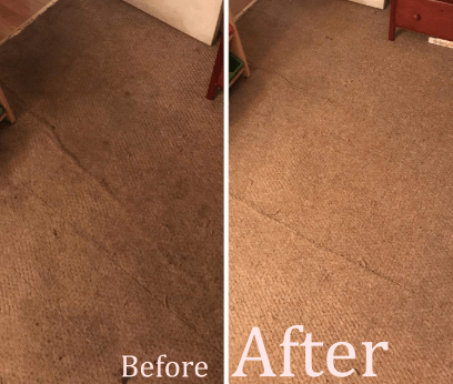 bissell proheat 1887 cleaning performance before vs after