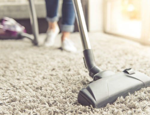 Best Vacuum for High Pile Carpets