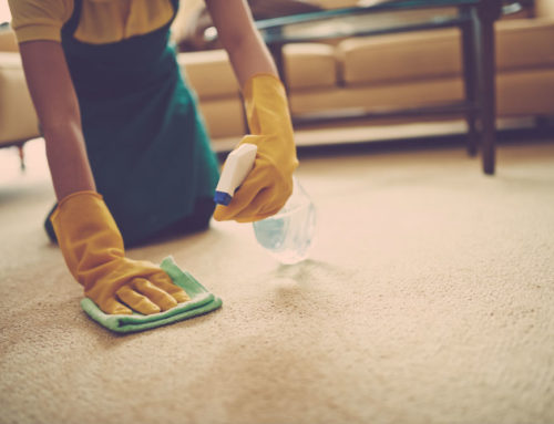 How to Get Slime Out of Carpets for Non-Stop Fun