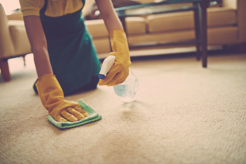 How to Get Slime Out of Carpets