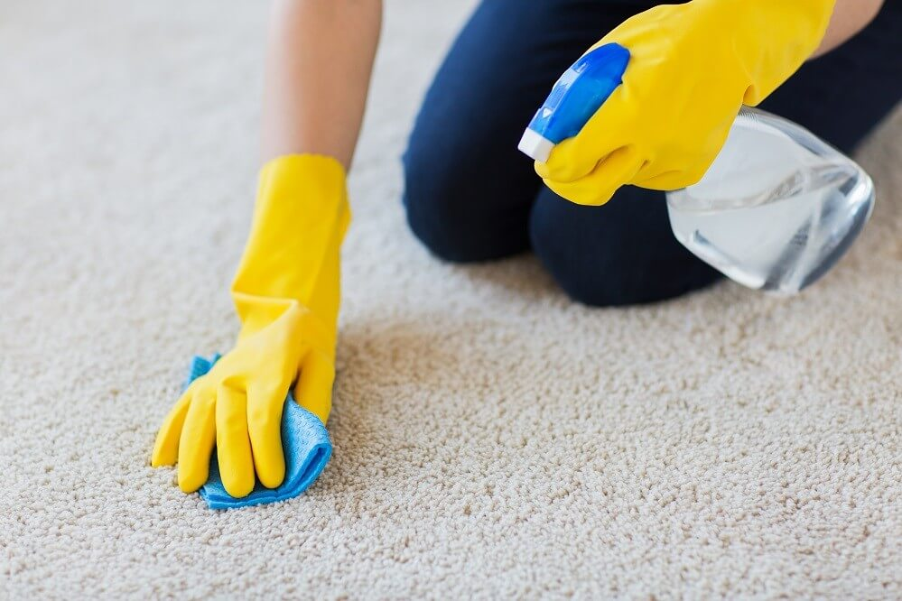 How to Get Mold Out of Carpets Effectively
