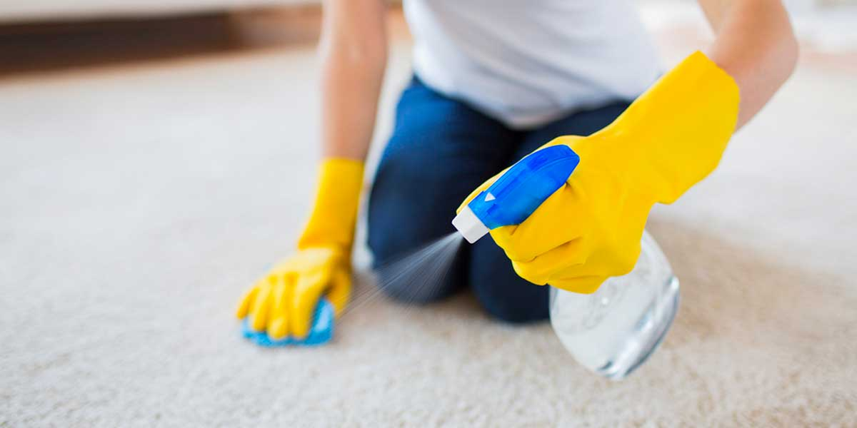 lady using water to clean carpet